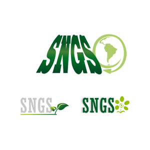 réalisation logo sngs