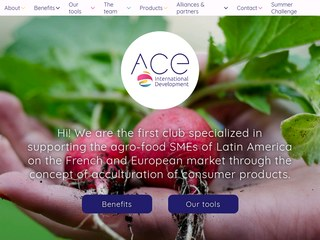 agro-food SMEs of Latin America