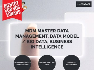 business intelligence master
