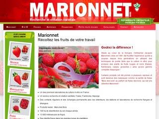 plants fraisiers